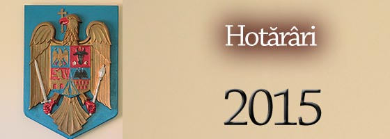 Cons local Hotarari 2015