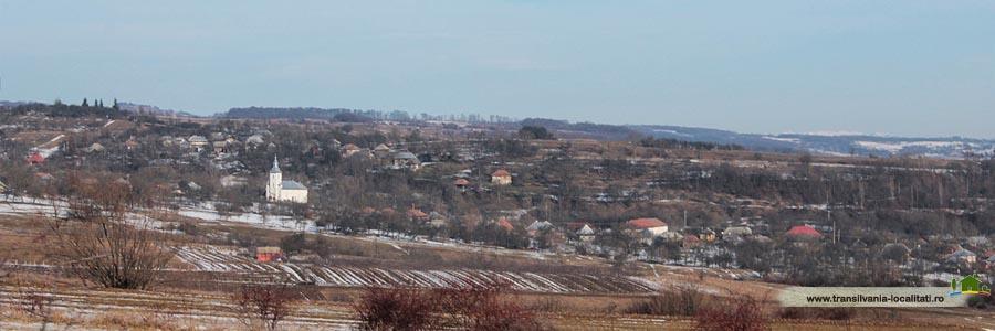 Cozla-Iarna 2015-Foto