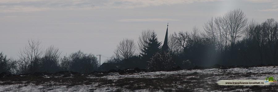 Soimuseni-Iarna 2015-Foto