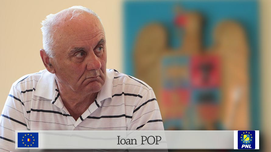 Ioan POP PNL