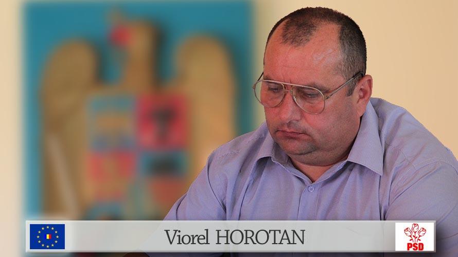 Viorel HOROTAN PSD