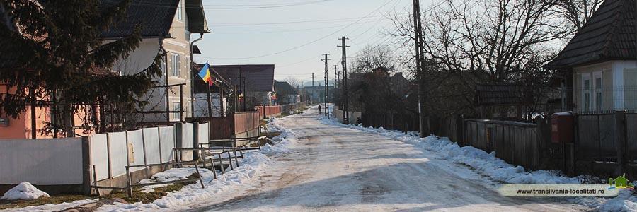 Lemniu-Iarna 2015-Foto